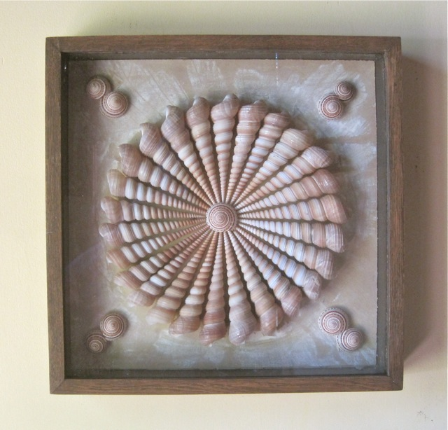 "Turitella Spiral, sundials, light taupe, 16""x16"""